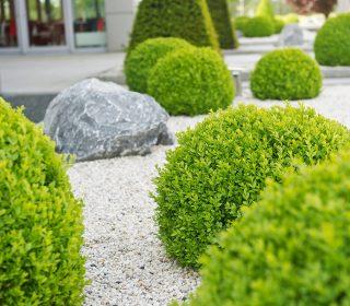 Steine und Büsche sorgen für Ruhe in der Wahrnehmung