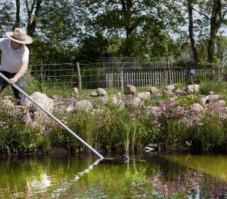 Pool- und Teichpflege