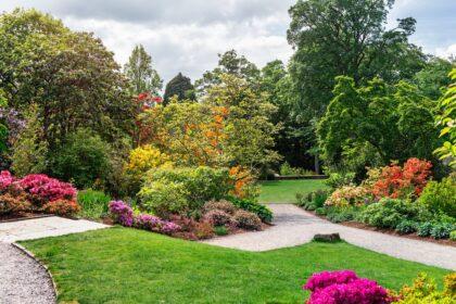 Wald Garten
